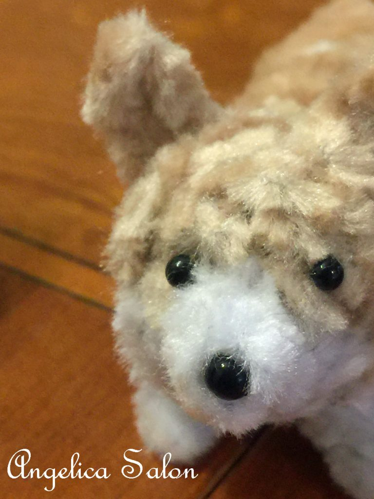 モールの犬コーギー